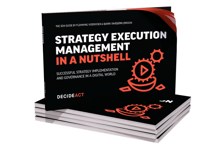 'Strategy Execution Management in a Nutshell' by Flemming Videriksen and Bjarni Snæbjörn Jónsson