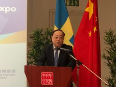 Wang Bingnan, Vice Minister of Commerce of China, speaks at Roadshow for the second CIIE in Stockholm (Photo/ Li Kang)