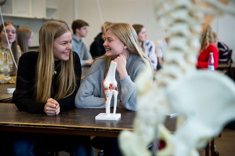 Nyt initiativ: Hf-elever prøver studielivet af på VIA