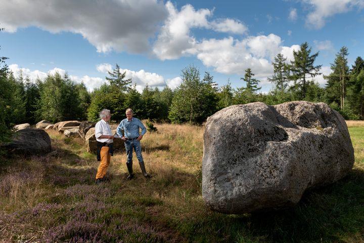 Arkæologer fra Moesgaard Museum besigtiger stenene, som skal bruges til rekonstruktionen af gravmonumentet Høj Stene. Foto: Michael Johansen, Foto/Medieafdelingen - Moesgaard Museum.